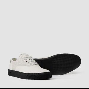 All saints low top sneakers
